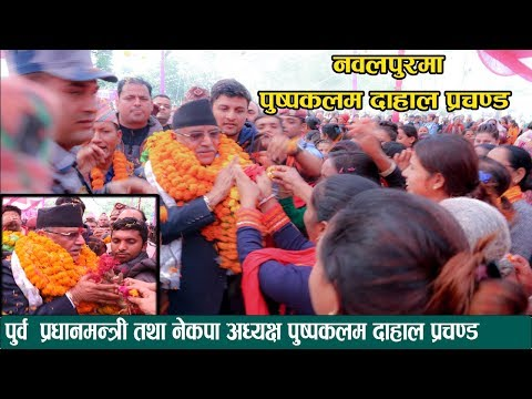 (नवलपुरमा पुष्पकमल दाहाल (प्रचण्ड) लाई भव्य स्वागत parchanda visit nawalpur - Duration: 14 minutes.)