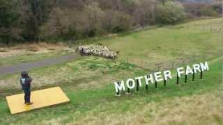 千葉県の春のお勧め観光地は、マザー牧場で