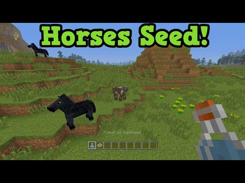 tags - Here is an amazing seed for Minecraft xbox 360 and Minecraft xbox one that has a bunch of horses at spawn (or the ability to have them spawn) as well as name tags and horse armor just below...