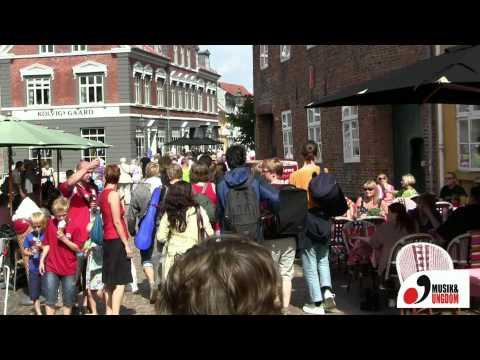 Ethno Denmark 2011