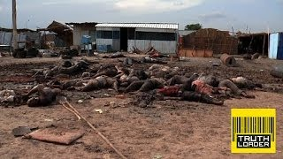 South Sudan became the world's newest state when it seceded from Sudan in 2011 but by December 2013 President Salva Kiir...
