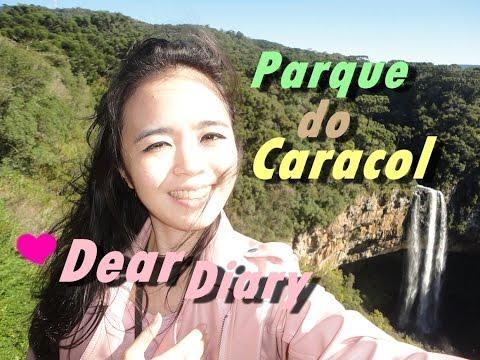 Dear Diary: Parque Estadual do Caracol em Canela - RS
