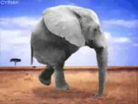 0 Retarded running elephant