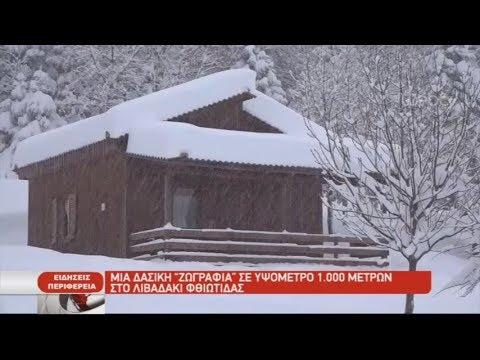 Το δασικό χωριό στο Λιβαδάκι Φθιώτιδας| 08/01/2019| ΕΡΤ