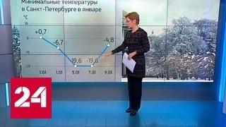 """""""Погода 24"""": потепление уже не за горами"""