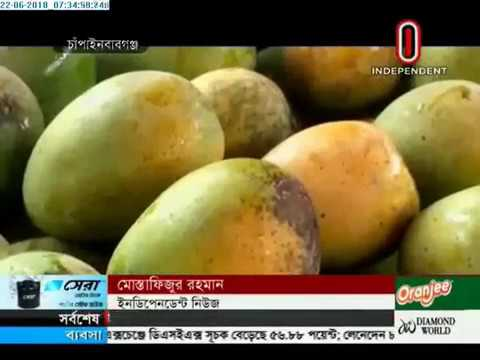 Mango farmers fears loss (22-06-2018)