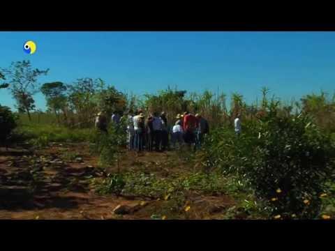Alunos de Agronomia visitam assentamento em Jaraguari MS