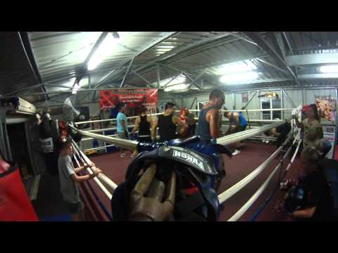 D Bay Boxing /Box Fit Training