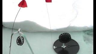 Ловля на зимние жерлицы + видео