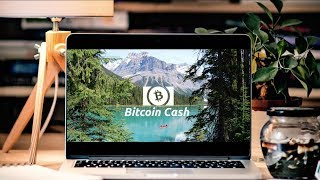 Bitcoin Core is NOT Bitcoin | Why I Support Bitcoin Cash
