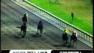 RACE 2 FAVORITE CHANNEL 10/02/2014