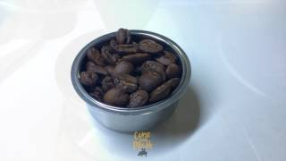 coffeediary ซื้อเมล็ดกาแฟ Pacamara EL SALVADOR จากฟาร์ม FINCA SANTA ROSA ที่อยู่ทางภาคเหนือของ EL SALVADOR...