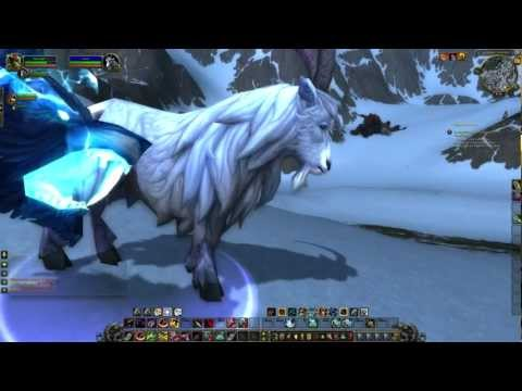 how to get a pet cat in wow