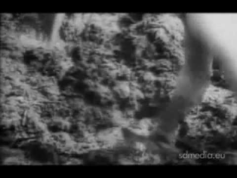 Kolyma: USSR's Terrifying Hell in Stalin's Frozen Death Mines: 3 Million Murdered (видео)