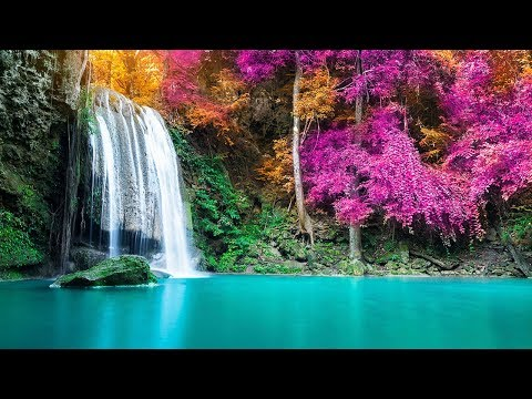 Relaxing Music 24/7, Meditation Music, Soothing Relaxation, Yoga Music, Study Music, Sleep Music