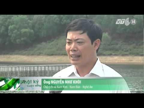 Nghệ An: Báo động nguy cơ vỡ hồ đập trong mùa mưa lũ