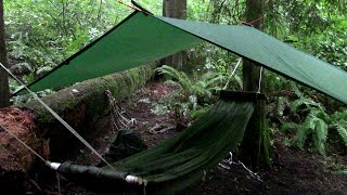 The Shelter-Half Hammock