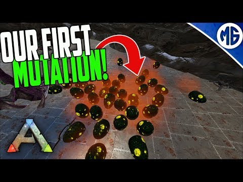 MASS HATCH FOR THEM MUTATIONS! 5 Man Ragnarok PvP | Ark: Survival Evolved
