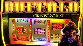 "http://www.ThisWeekInGambling.com - We take a look at Aristocrat's Buffalo Thundering 7s Slot Machine! The Buffalo slots are some of the most popular multi-reel games found in casinos. Buffalo Thundering 7s is the first to be delivered on the new RELM stepper cabinet! This straight forward 3-Reel slot machine comes with big payouts and huge progressive jackpots. Plus, it features a Wheel mechanic for added excitement! Aristocrat says that ""...You're bound to hear the roar of 'Buffalo!' echo across the gaming floor. Buffalo is a cult classic that has stampeded its way across the world, with multiple cabinet configurations and enhanced features that give players a unique playing opportunity.""You can learn more about the Buffalo Thundering 7s Slot Machine and Aristocrat Gaming when you visit their website: https://www.aristocrat.com/games/buffalo/BUFFALO STAMPEDE: http://www.aristocrat-us.com/buffalo-stampedeBUFFALO GRAND: http://www.aristocrat-us.com/buffalo-grand"