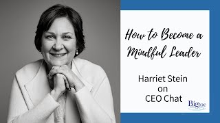 Harriet Stein, Big Toe in the Water, interviewed on The Mindful Workplace on CEO Chat