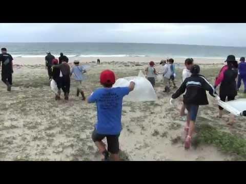 種子島の学校活動:西野小学校前之浜海岸清掃活動ダイジェスト