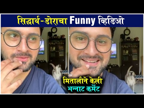 Siddharth Chandekar CUTE & FUNNY Video With His Pet Dog DORA | सिद्धार्थ-डोराचा Cute Video