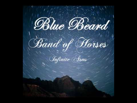 Tekst piosenki Band Of Horses - Blue Beard po polsku