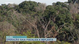 Operação Gaia: Polícia Ambiental de Bauru reforça conscientização sobre crimes ambientais