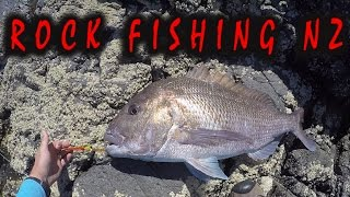 Moturoa New Zealand  city pictures gallery : ROCK FISHING FOR SNAPPER AND KINGFISH FAR NORTH NZ