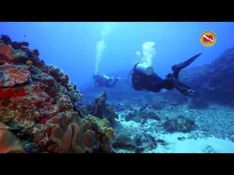 NUSA PENIDA<br>Author : Scuba Family