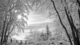Video K. Ctibor: Prosinec a sníh