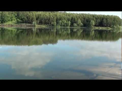 рыбалка за ишлеями