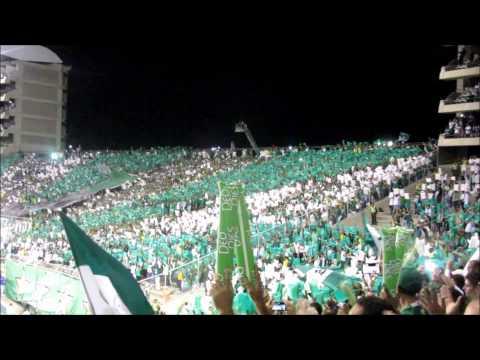 Acá se murieron | Deportivo Cali 1-0 Millonarios - Frente Radical Verdiblanco - Deportivo Cali