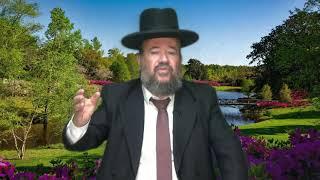 פרשת שלח לך – ארץ ישראל