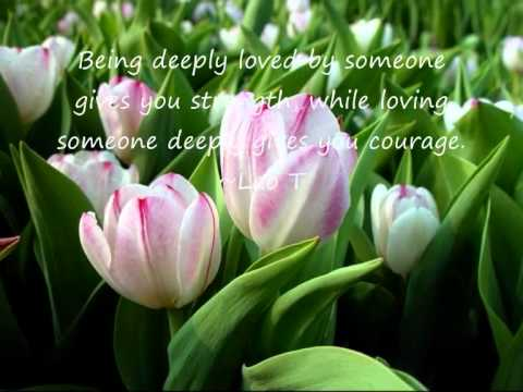 Quotes & Saying on LOVE & MARRIAGE