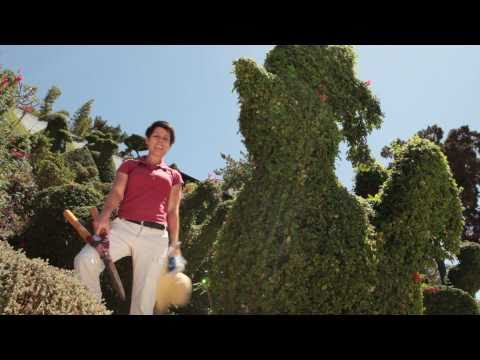 Can Hand Episode 7: How to Trim Shrubs and Prune Hedges with a
