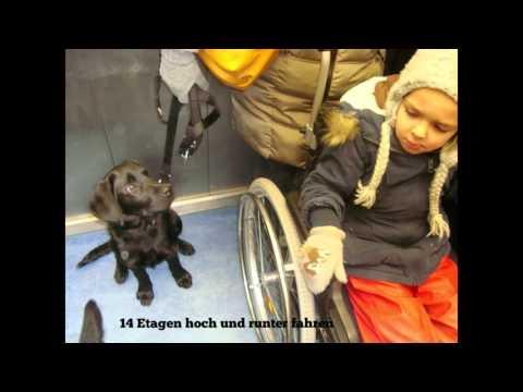 Stadt- & Rollstuhltraining