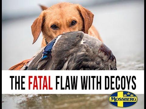 Duck Decoys: Fatal Mistake Waterfowl Hunters Make With Duck Decoys And Duck Decoy Rigs
