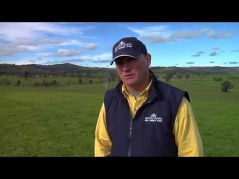 Rob Martin TM Testimonial