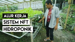 Download Video ALUR KERJA SISTEM NFT HIDROPONIK MP3 3GP MP4