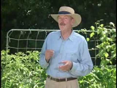 Mel Bartholomew – Introducing Square Foot Gardening