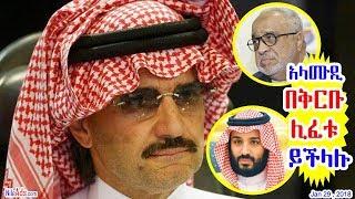 አላሙዲ በቅርቡ ሊፈቱ ይችላሉ ተብሏል Al Amoudi in Saudi - DW