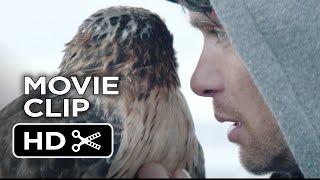Nonton Aloft Movie Clip   Falconry  2015    Jennifer Connelly  Cillian Murphy Movie Hd Film Subtitle Indonesia Streaming Movie Download