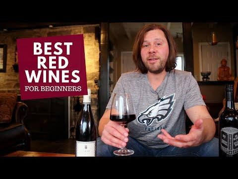 The Best Red Wines for Beginners (Series): #5 Syrah & Shiraz