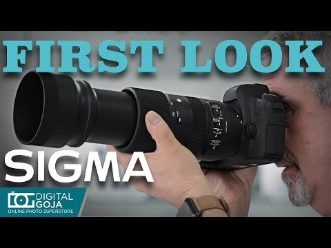 The Amazing New SIGMA 100-400mm f/5-6.3 DG OS HSM Contemporary Lens | First Impressions
