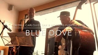 """Blue Dove"" with Fredrik Carlquist & Horacio Fumero"