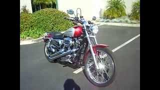 6. 2004 Harley-Davidson Sportster XL 1200 Custom