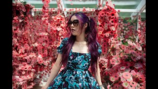 Video Tokyo robot restaurant, Japan maid cafe & cat theme cafes! ABC Nightline La Carmina interview MP3, 3GP, MP4, WEBM, AVI, FLV Desember 2017