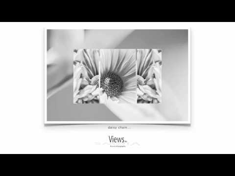 Floral Art Prints | Black and White Floral Photography