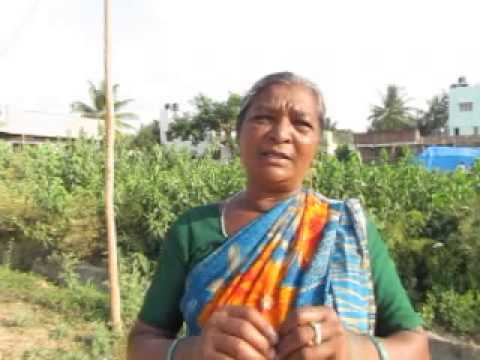 Shimoga Election - An old lady declaring she will vote for Congress candidate Prasannakumar.